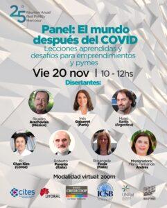 Panel 20/11