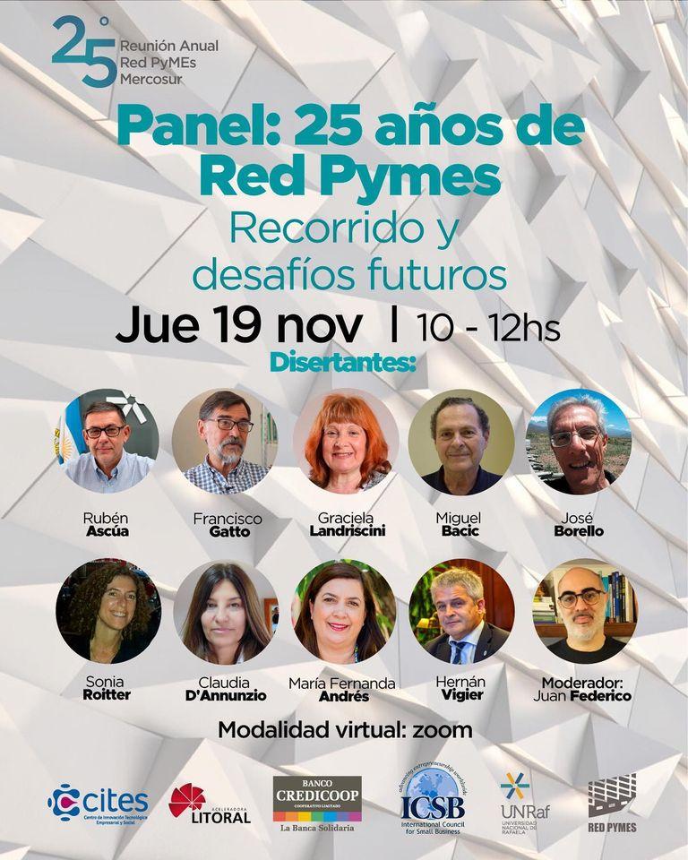 Panel 19/11